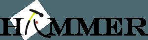 The Hammer Boccia Ramp by Gravity Logo Thumbnail